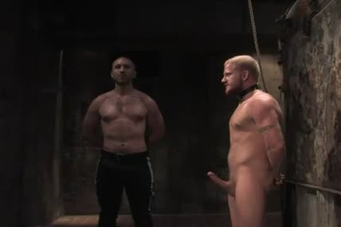 blond gay In bondage mouth fucked