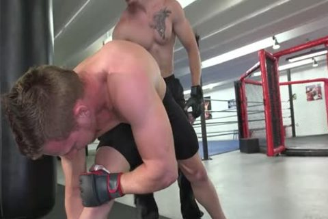Johnny And Owen Kickboxing plow